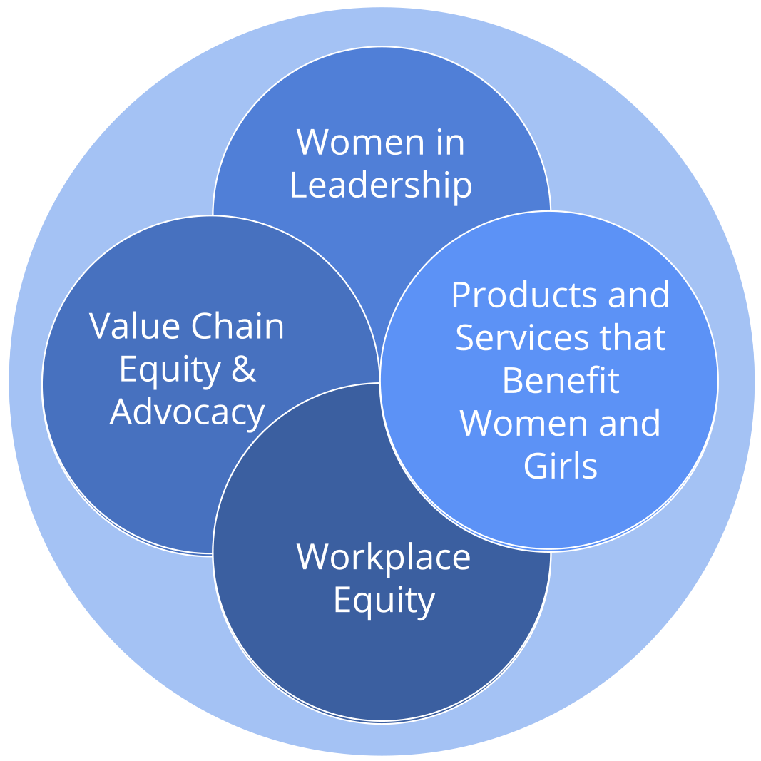 Image describing the four gender lenses used to guide investment strategies